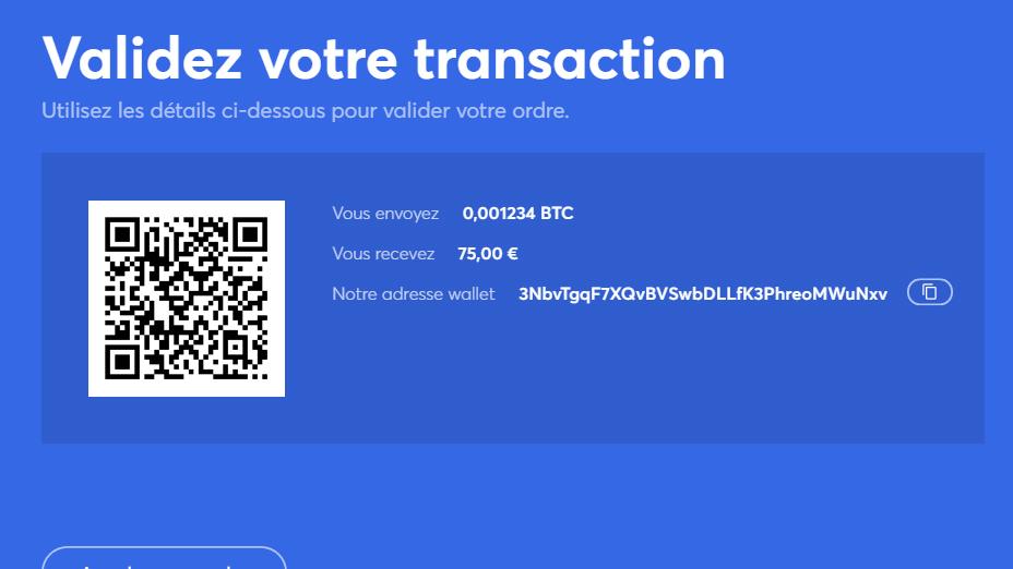 envoyez votre crypto-monnaie à l'adresse portefeuille d'anycoin directement